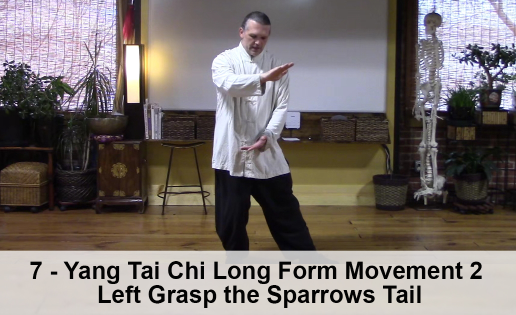 7 - Yang Tai Chi Long Form Movement 2 - Left Grasp the Sparrows ...